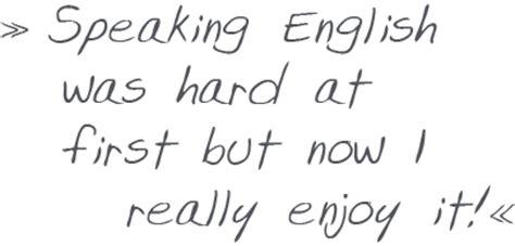 The Importance of Standard English Essay; language